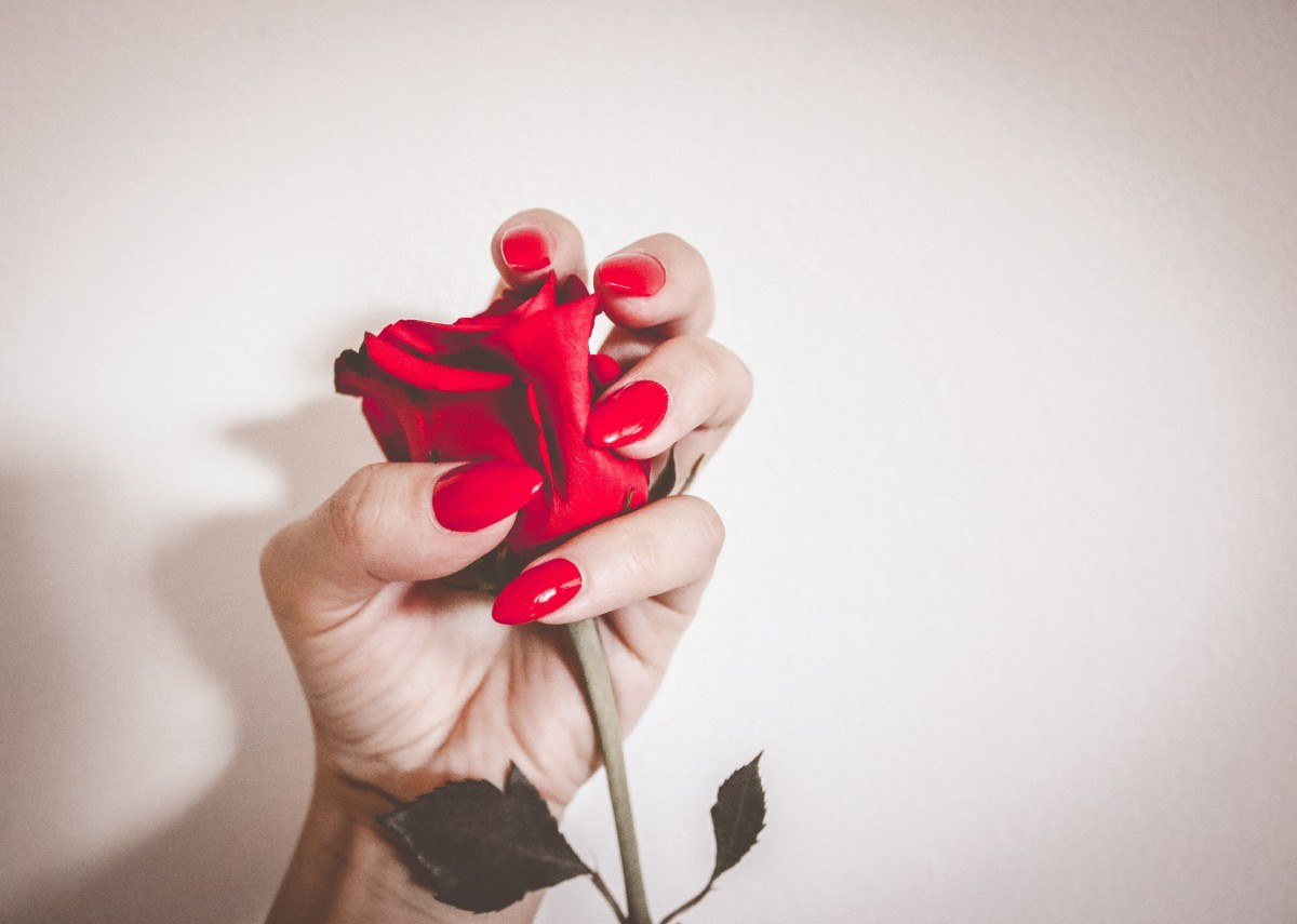 Red nails holding rose