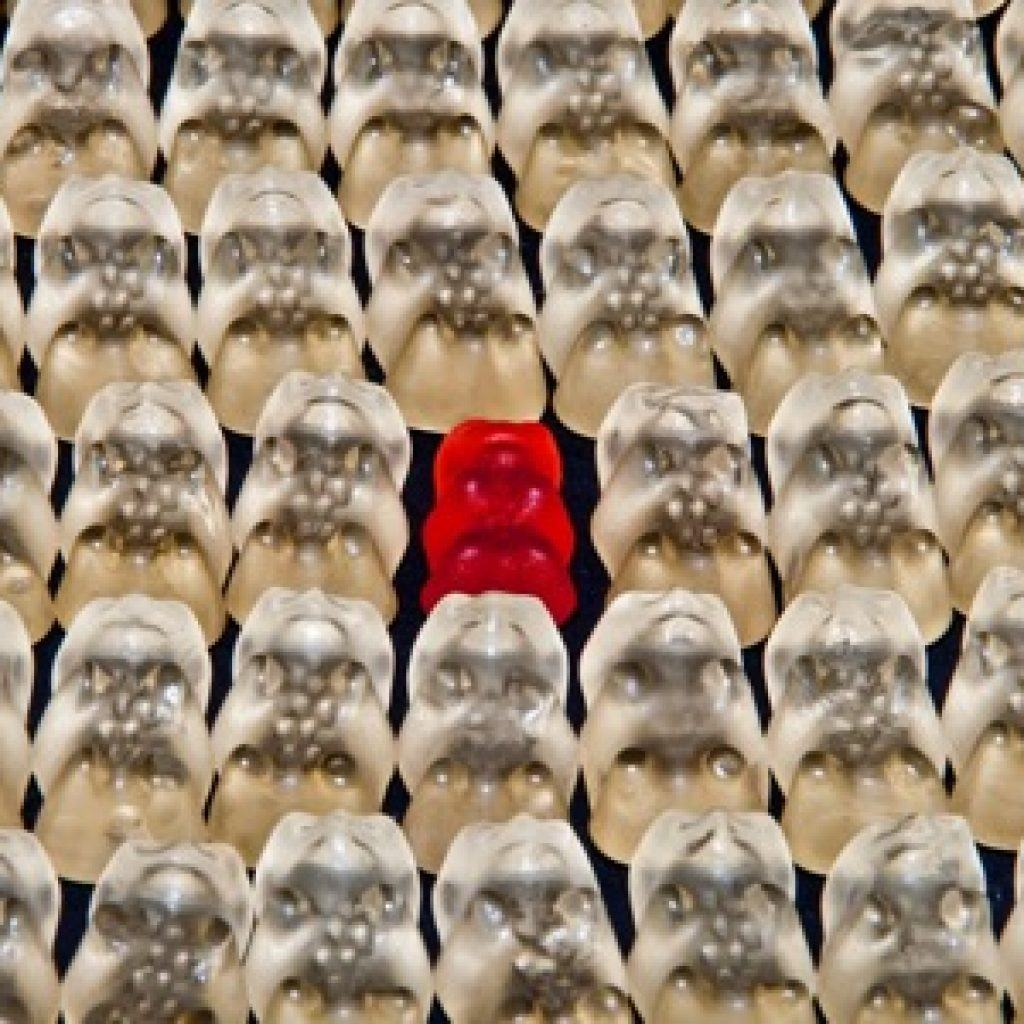 How To Stand Out and Be Memorable in a sea of copy cats